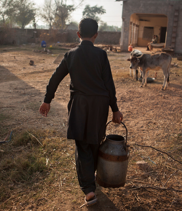 Livelihoods based on a agro-pastoral stand the most at risk in the changing climate of the Hunza